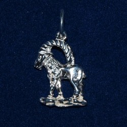 Sterling silver zodic pendants